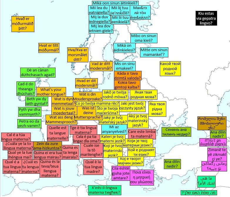 Mi az anyanyelved?