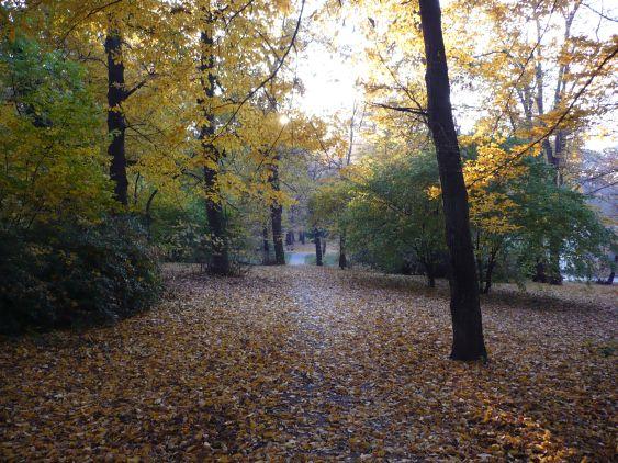 hideg őszi napok